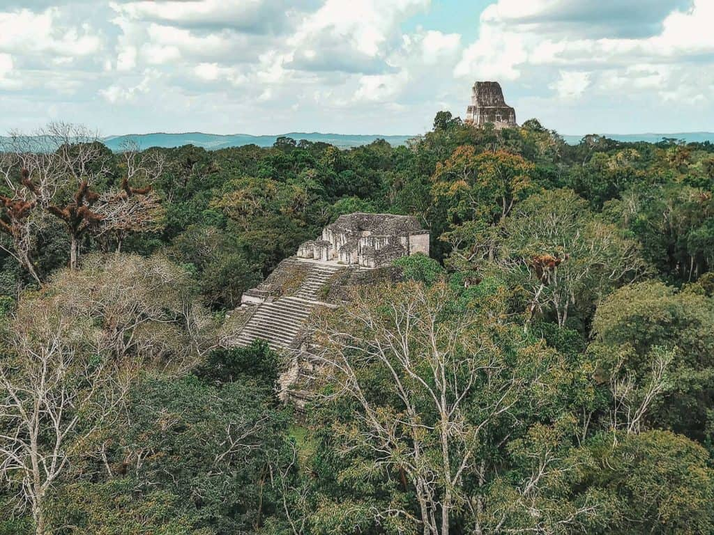 View Of Temple IV From Atop Pyramid Of The Lost World
